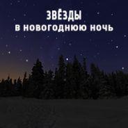 Звёзды в новогоднюю ночь