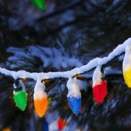 Хорошо ли вы помните стихи про Новый год?