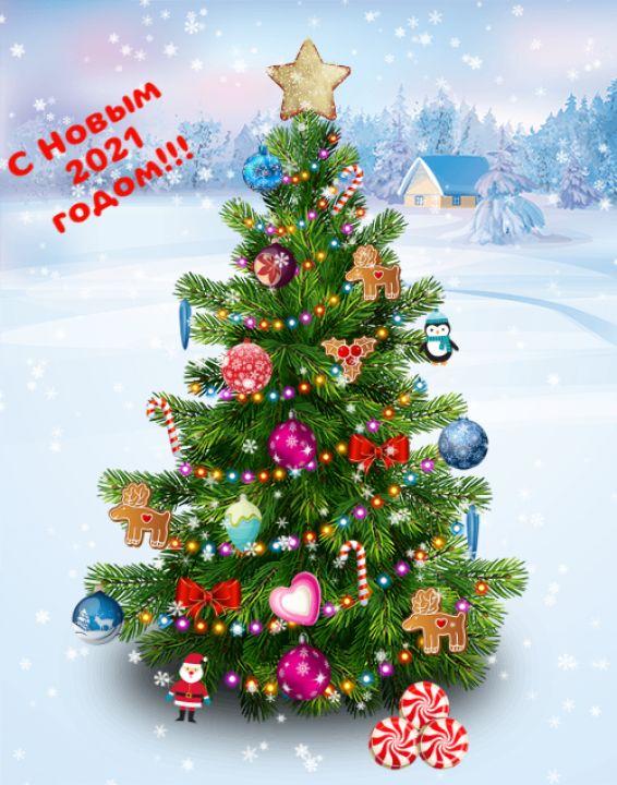 Алсу Нафисовна Кучукбаева