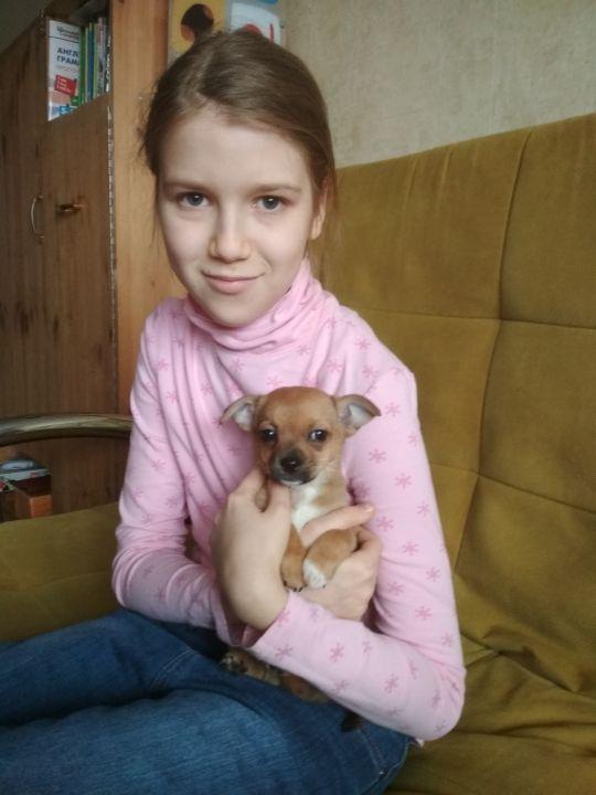 Сысоева Полина Владимировна