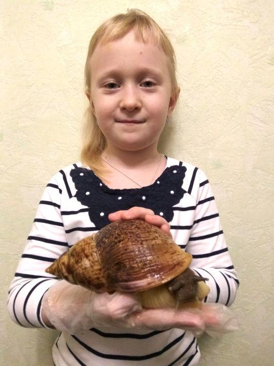 Фураева Арина Сергеевна