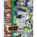 Апплика Дневник школьный Граффити С4072-02