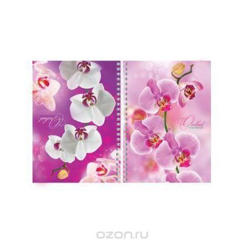 Hatber Тетрадь двойная Орхидея 80 листов в клетку