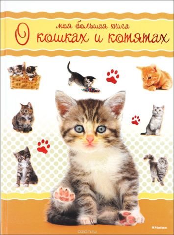 Моя большая книга о кошках и котятах