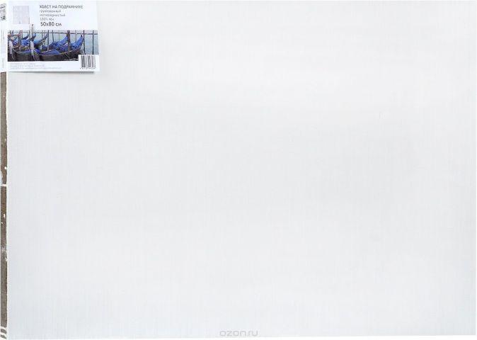 """Холст ArtQuaDrum """"Мелкозернистый"""" 50 х 80 см, на подрамнике, грунтованный"""