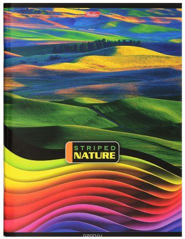Hatber Тетрадь Полосатый мир 96 листов в линейку цвет мультиколор