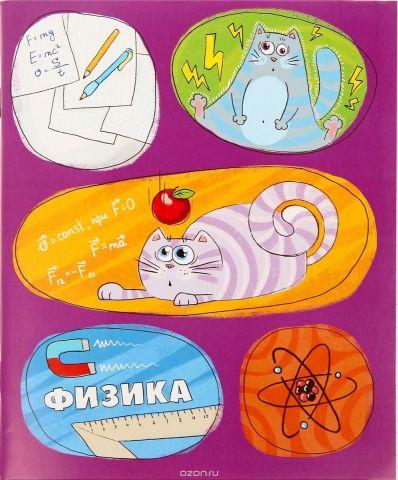 Тетрадь Физика 48 листов в клетку