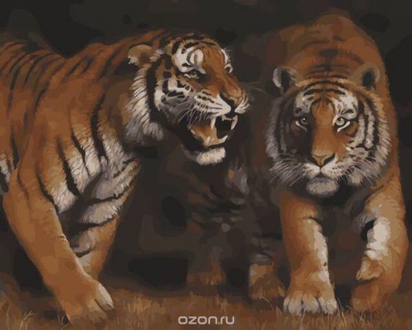 """Набор для рисования по номерам Цветной """"Дружба тигра"""", 40 х 50 см"""