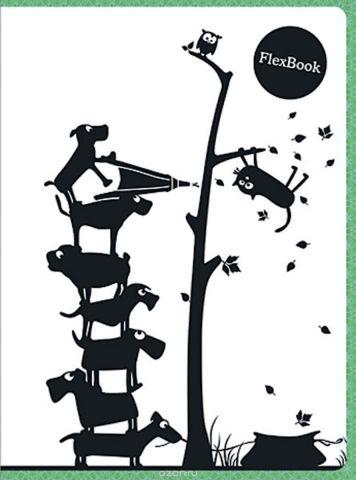 Expert Complete Тетрадь Animals 80 листов в клетку цвет белый черный зеленый формат A5