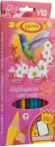 Limpopo Набор цветных карандашей Колибри 24 шт